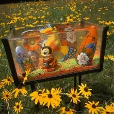 Fish Tank Sonata Ilfachrome - Hark to the Medley