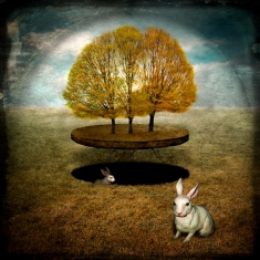 Three Trees Two Rabbits